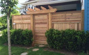 Increase the Privacy in Your Yard