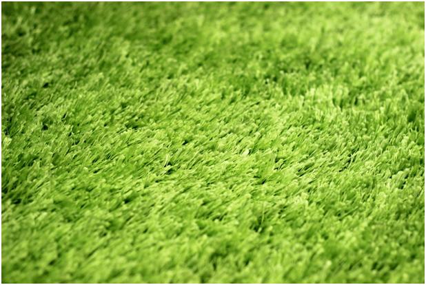 Forex carpet cleaner